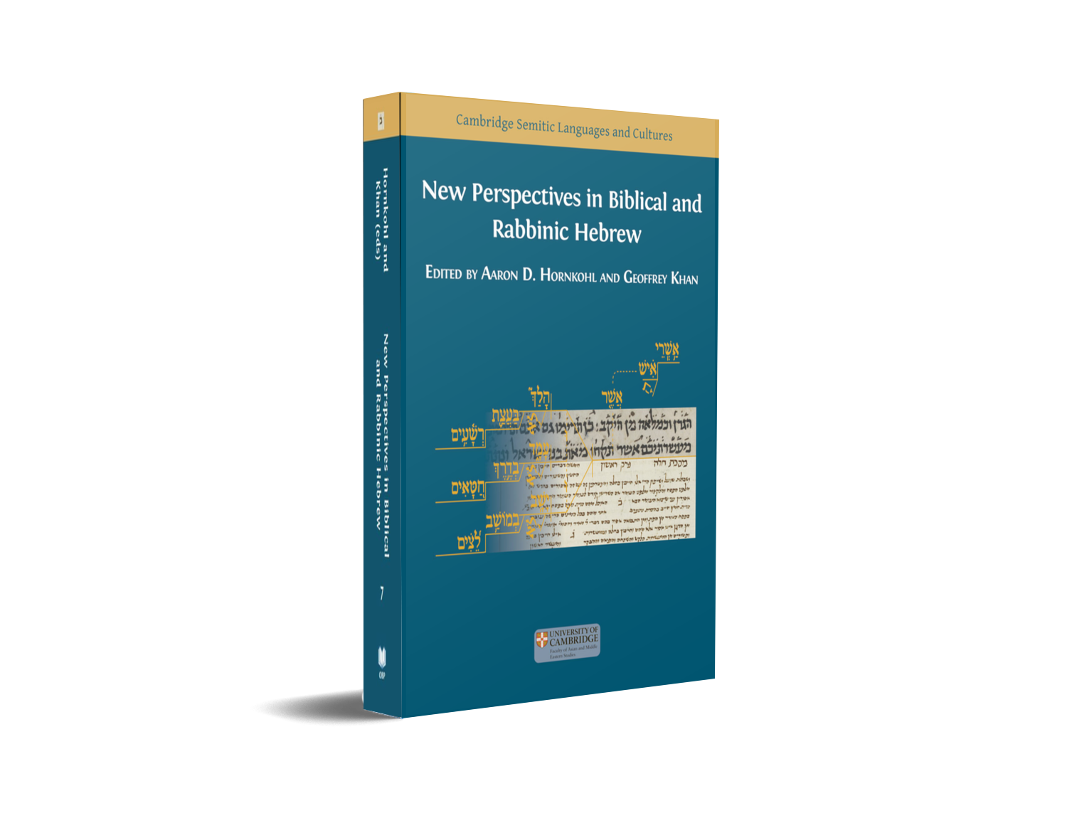 New Perspectives in Biblical and Rabbinic Hebrew